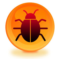 How To Locate Bugs In The Home in Newport